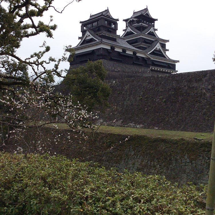 2016年3月、お洒落道場外伝の取材時に撮った熊本城。