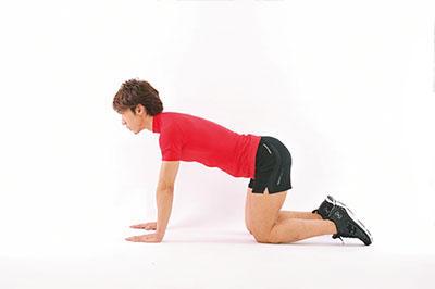 <b>Step 1</b><hr style='margin-bottom: 20px'>床に両手・両膝をつき、軽く顔を上げ、視線は前方に