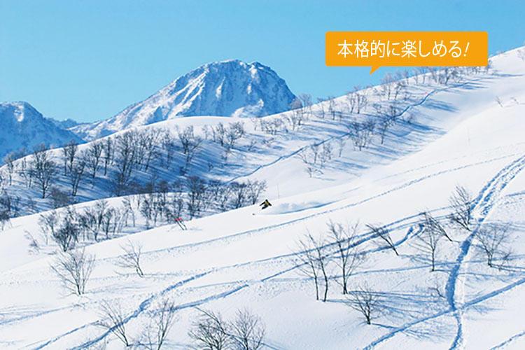 <strong>【ロッテ アライ リゾート スキー場】</strong><br><b>妙高高原に位置する伝説の深雪の聖地がこの冬、復活</b><br>新潟県妙高市に位置し、圧倒的な積雪量を誇る大毛無山。本州で極上のパウダースノーが楽しめる希少なゲレンデとして人気を博していたが、2006年に閉鎖。この冬、世界で高級ホテルを展開するホテルロッテがプレミアムマウンテンリゾートとして、12月16日に再オープンする予定だ。<br>住所:新潟県妙高市両善寺1966 TEL:0255-75-1100