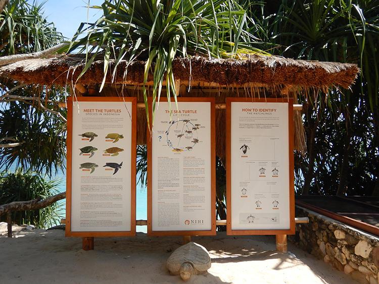 ビーチには島の周辺に生息する海洋生物の案内が。自然の豊かさと距離感が、こうしたことからも伝わる。