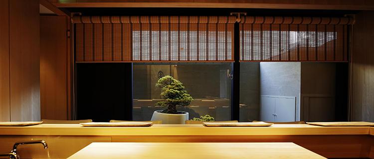 正面の坪庭では、見事な枝ぶりの松の盆栽がゲストを迎えてくれる。
