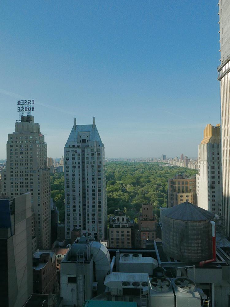 25階〜41階の高層階にある「タワーパークビュー」ルームからは、セントラルパークの緑を眺めることができる。