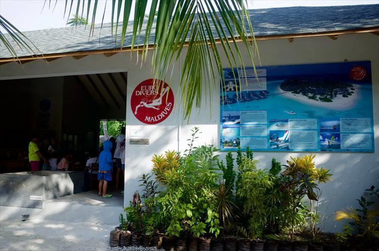 海に関するアクティビティは、島内にあるダイビングセンターで申し込む。