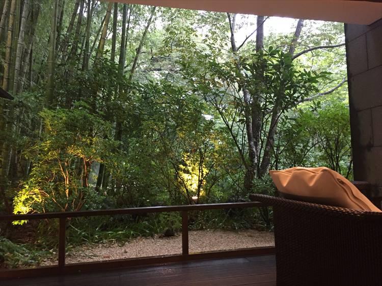 窓からは竹林と吉奈川も見える