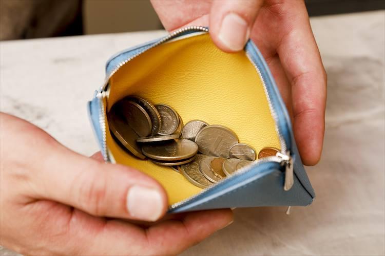 上のジッパーを開くと、中はバイカラー。開口の大きい便利な小銭入れとして使える。