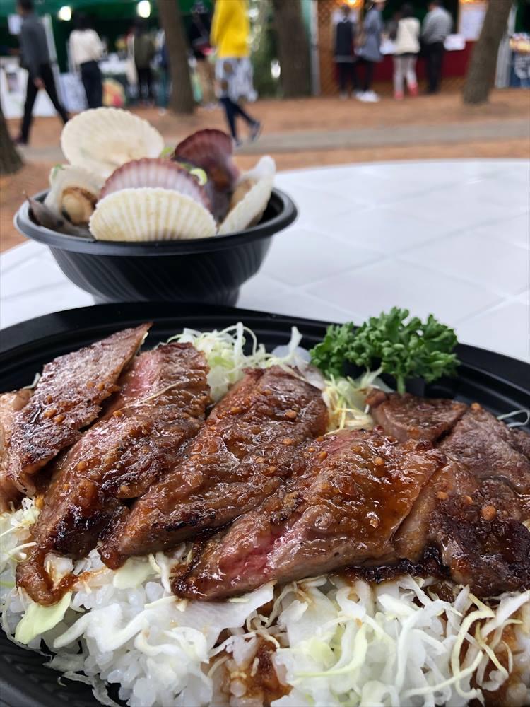 宮崎牛のステーキ丼。1500円。めちゃうまでした!!!