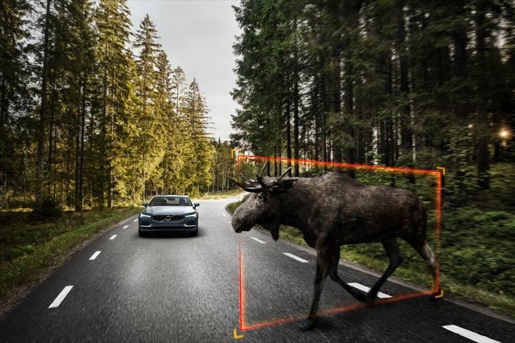 【VOLVO】ドライバーが運転をするより、自動運転のほうが事故の発生件数を減らせると考え、安全技術の最先端をいくボルボ。大型動物の検知機能も世界で初めて実用化している。