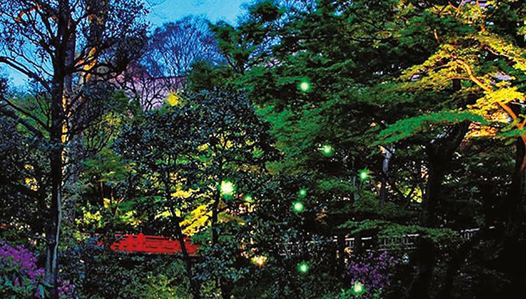 東京のホテルでホタル!? 椿山荘の人気イベント「ほたるの夕べ」が今年も開催