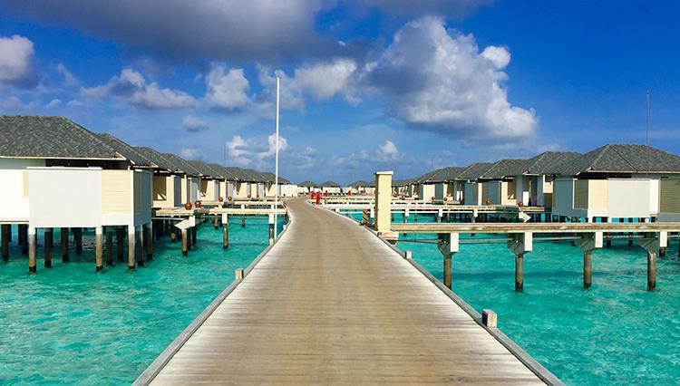 モルディブの無人島に住むのってこんな感じ?「アマリ ハヴォダ」で始まる【大人の男と女のモルディブ海岸物語 #2】