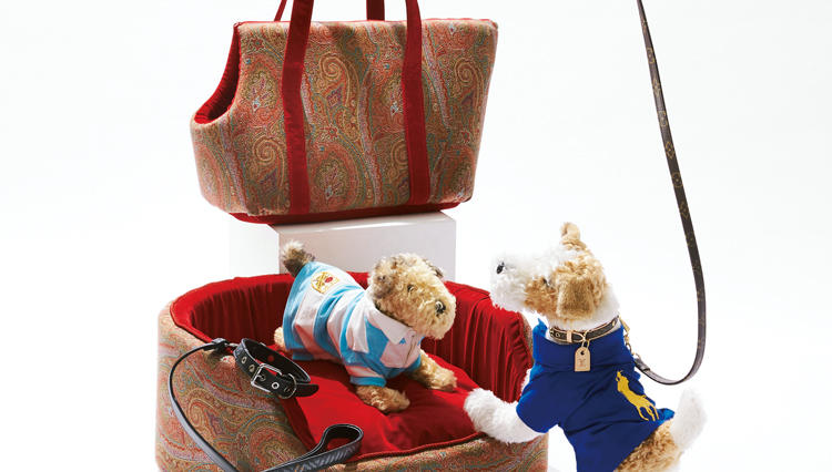 大切な愛犬にも春の衣替え。愛すべきワンちゃんグッズ