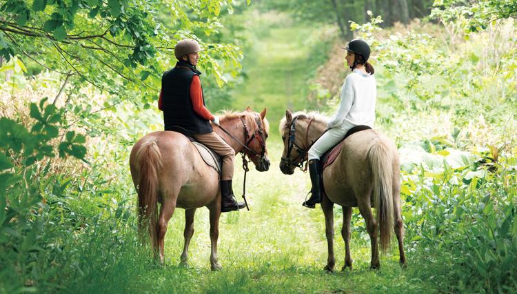 【プレゼント付きアンケートあり】北海道・十勝の森で乗馬する「プレミアム・アウトドア」のすすめ