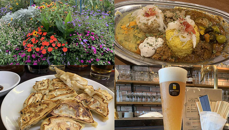 神戸の餃子3軒に大阪のスパイスカレーetc…「男のひとり旅」は食いだおれてナンボ!?
