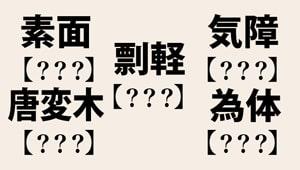 素面、気障、耄碌・・・デキる社会人なら読めてほしい難読漢字【全8問】