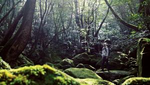【屋久島】パワーチャージの旅。絶景の穴場スポットに心が洗われる