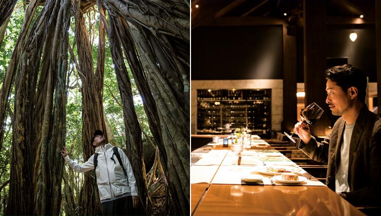 【世界遺産の森・屋久島】ラグジュアリーステイなら、ホテルはどこに泊まる?