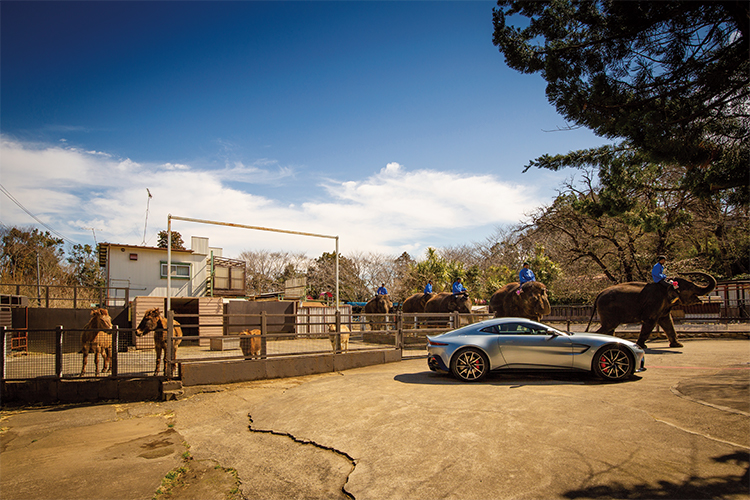 Aston Martin × Elephant Ride