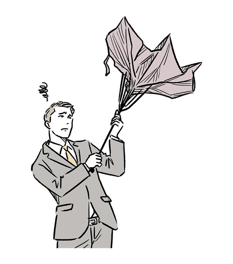 きちんとした装いには傘まで気合いを入れたい
