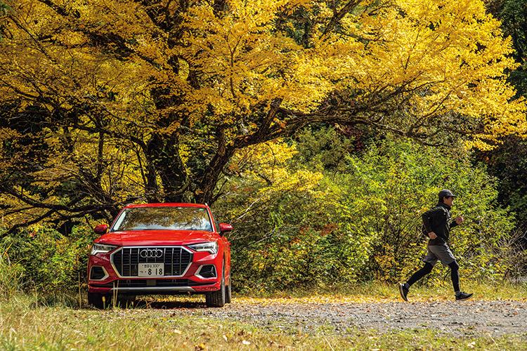 Audi Q3 35 TFSI advanced × Autumn leaves viewing