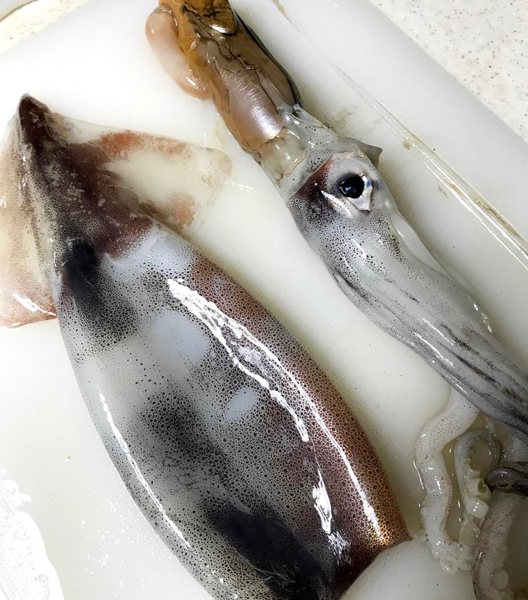 <p>2.まずは下処理から。スルメイカは足と胴体の間に指を入れ、くっついている部分を外し、肝を引き出し、軟骨も取る。肝に付いている墨袋を慎重に取り、肝と目のある部分、げそを切り離す。</p>