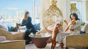 ホテル インターコンチネンタル 東京ベイなら愛犬と一緒に宿泊できる【ひと言ニュース】